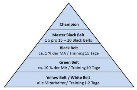 Six Sigma Rollen