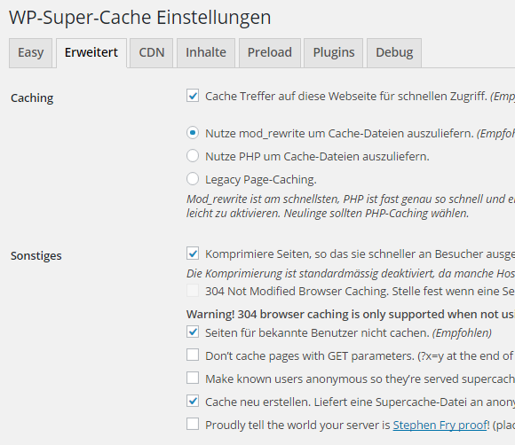 google pagespeed wpsupercache 1.png